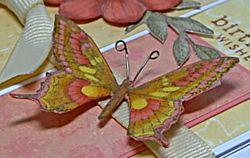 Butterfly280309