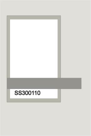 Ss300110