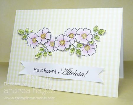 Card_100411