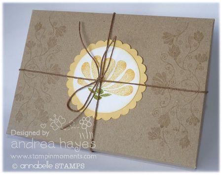 Card6_011211