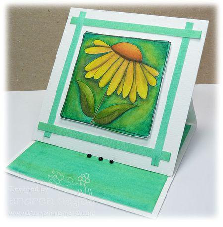 Card2_280312